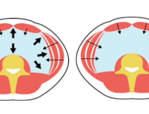 Gimnasia para la espalda. Método del Core dinámico